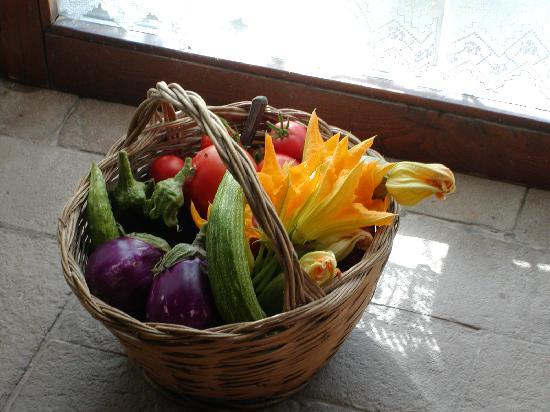 San Cristoforo: prodotti del nostro orto