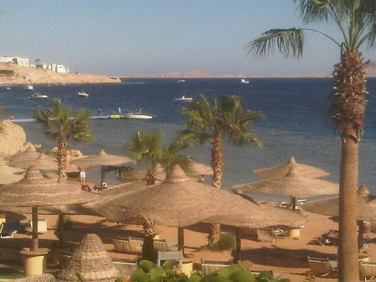 The Royal Savoy Sharm El Sheikh: hot everyday just so soo relaxing