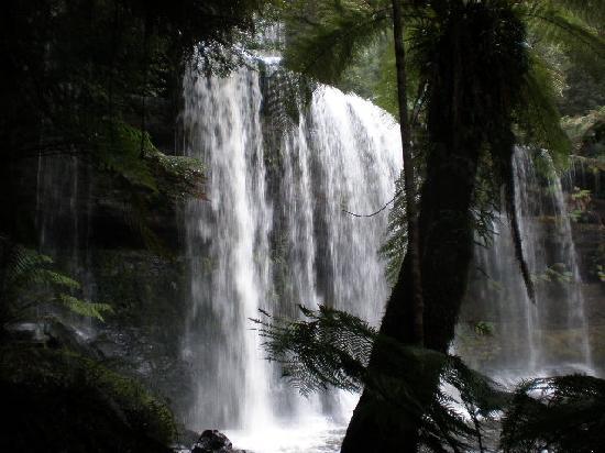Russell Falls, 30min From  Heimat Chalets