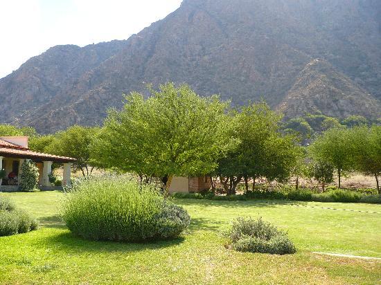 Vinas de Cafayate Wine Resort: Cerros