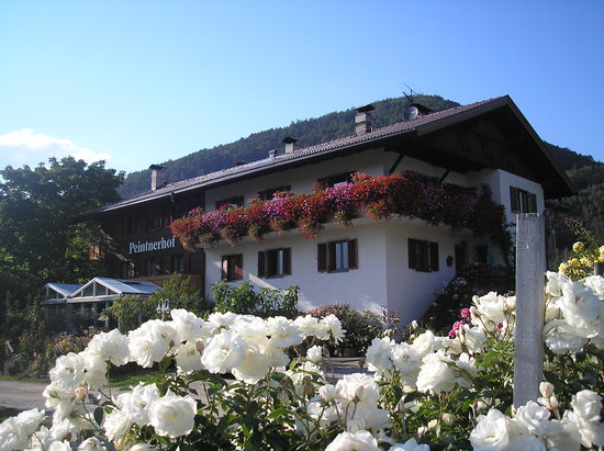Naz-Sciaves, Ιταλία: La pensione Peitnerhof