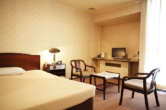 Yasu City Hotel: ツインルーム