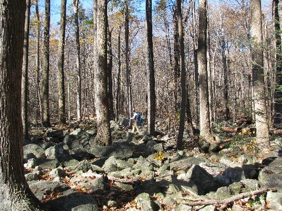 Kempton, Pensilvania: River of Rocks Trail