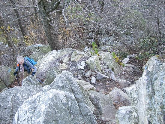 Hawk Mountain Sanctuary: Climbing East Rocks