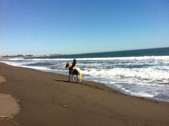 Hostal Punta de Lobos: Cabalgata por la playa