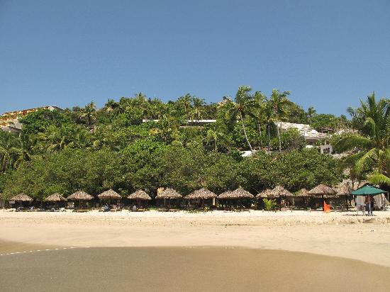 Catalina Beach Resort : There are about 14 buildings hiding in the landscape.