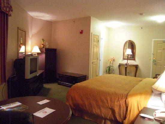 Cocca's Inns & Suites Albany Airport: Interior King Room