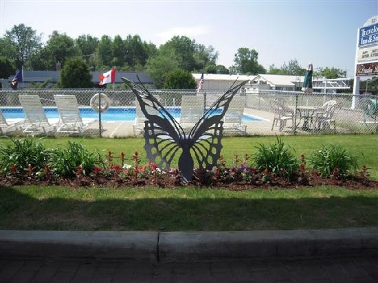 Travelodge Inn and Suites Latham : Butterfly Bench & Pool