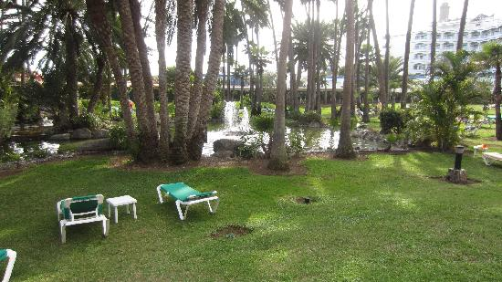 Hotel Riu Palace Oasis: Part of the gardens