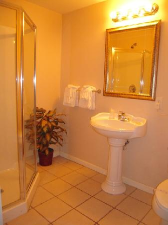 Golden Circle Inn & Suites: Bathroom