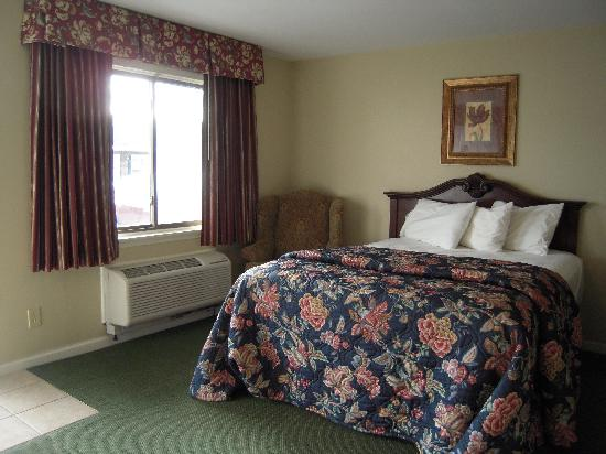 Golden Circle Inn & Suites: Petite Single Room