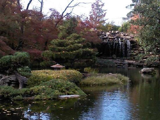 Koi Pond Picture Of Fort Worth Botanic Garden Fort Worth Tripadvisor