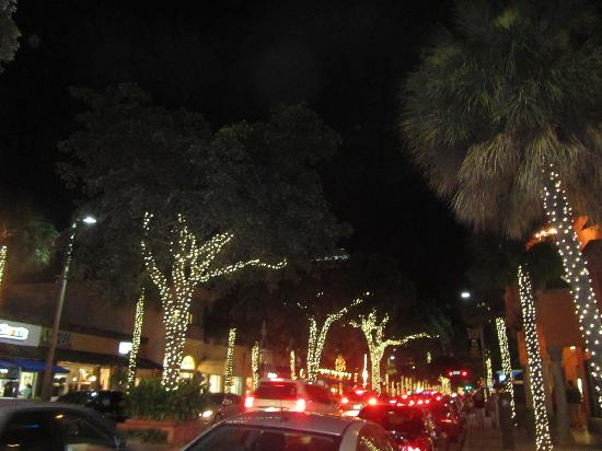 Night Tours Fort Lauderdale