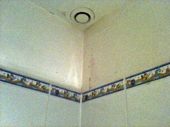 La Ferme du Pressoir : Pink and Black mold in the shower area