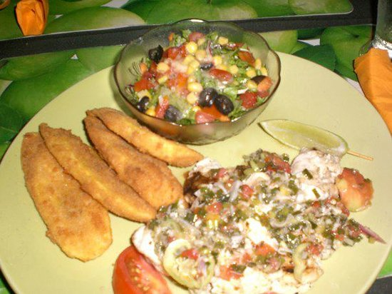 Old Stone Grill & Bar: Snapper, plantains and salad