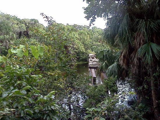 Hugh Taylor Birch State Park: Old rail trestle across the lagoon