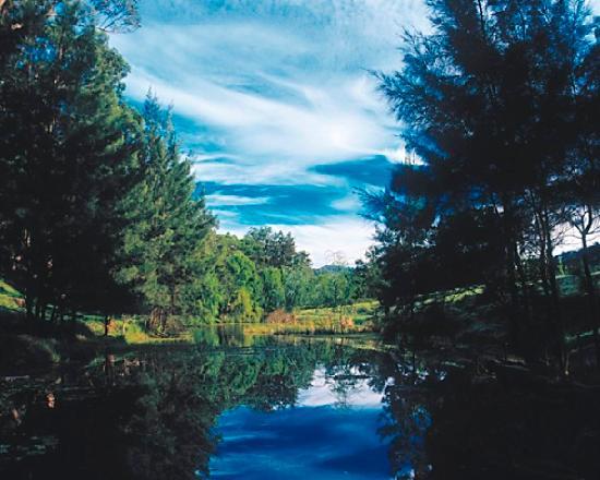 雪松小溪别墅照片