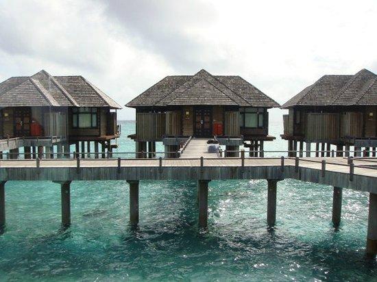 The Sun Siyam Iru Fushi Maldives: Horizon Water Villa