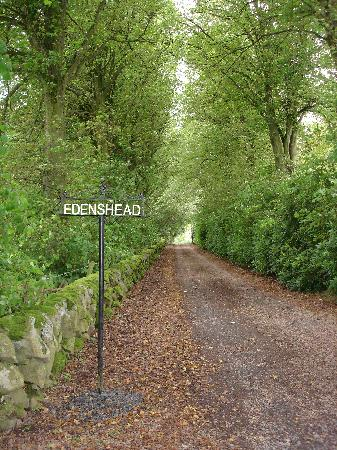 Edenshead Stables Bed & Breakfast: The driveway that takes you to Edenshead
