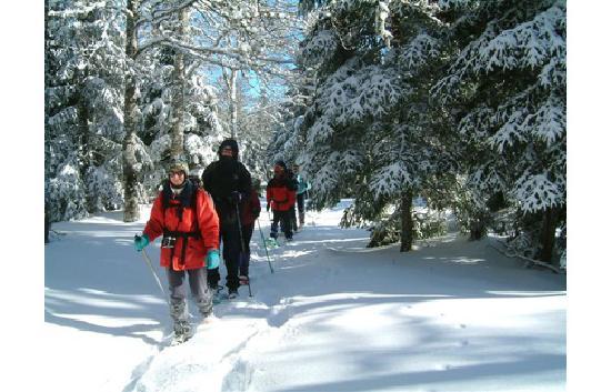 """""""En Cevennes"""" : ski a l aigoual"""