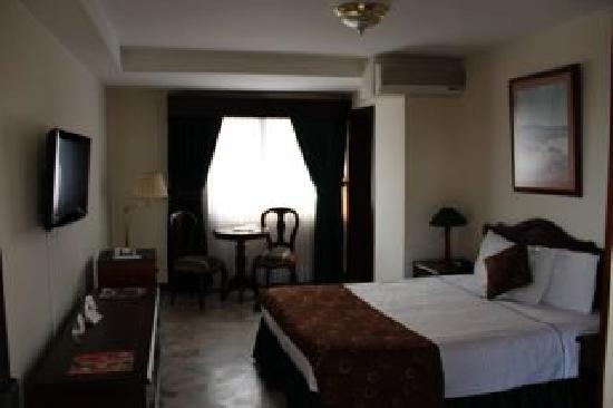 San Fernando Real Hotel: Habitacion 501