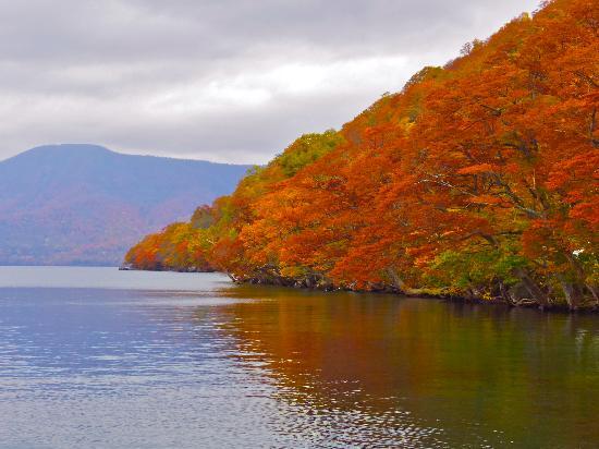 Lake Towada : 湖畔