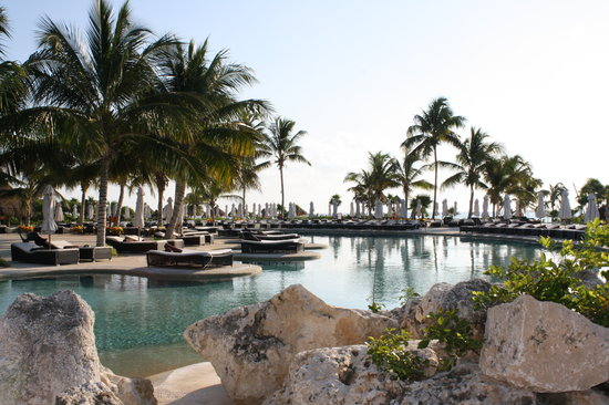Secrets Maroma Beach Riviera Cancun: pool rocks with iquanas