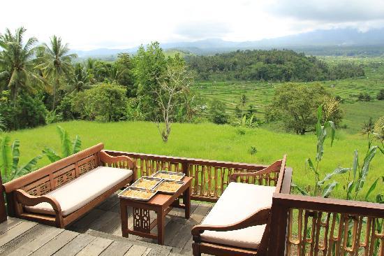 Bali Asli Restaurant: the view