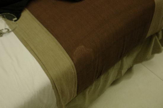 Tanaya Bed & Breakfast: Nasty stain on blanket