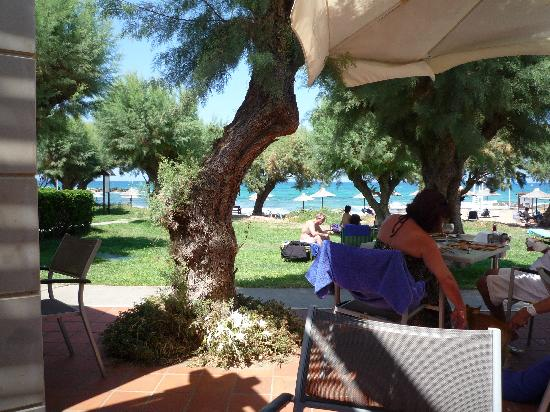 Cretan Malia Park: lovely for lunch by the sea