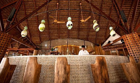 Constance Moofushi Resort, Maldives - Manta - Picture of