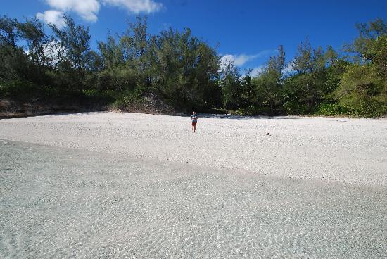 Atiu Villas: one of Atiu's beaches