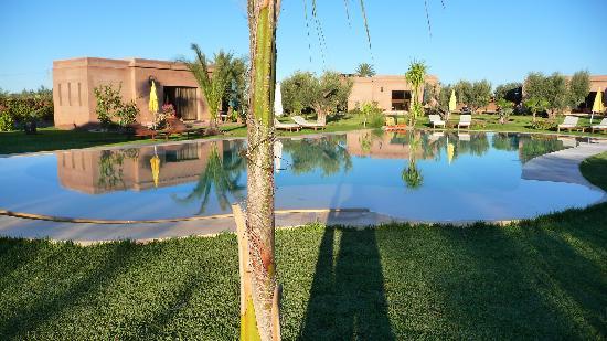 Oasis Jena: piscine et douirias