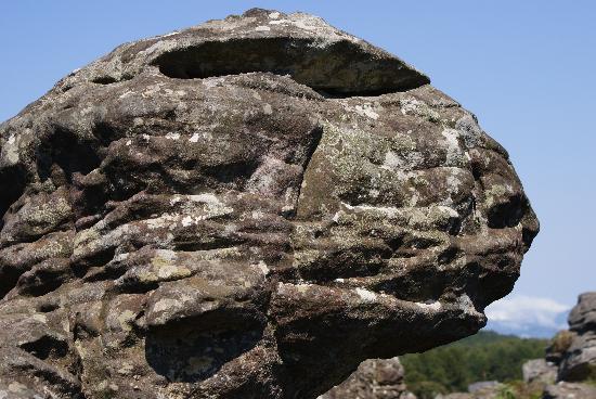 Kapsche Hoop Gastehuis: Baboon Rock