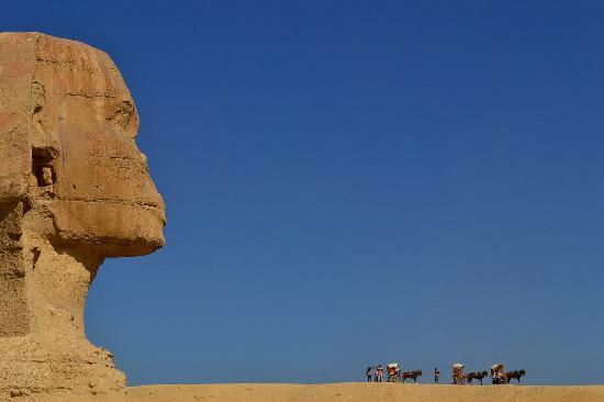 Pyramids of Giza: the sphinx