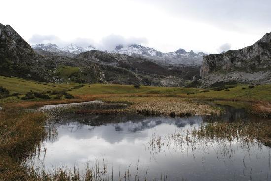 Picos de Europa: La cienaga de Covadonga