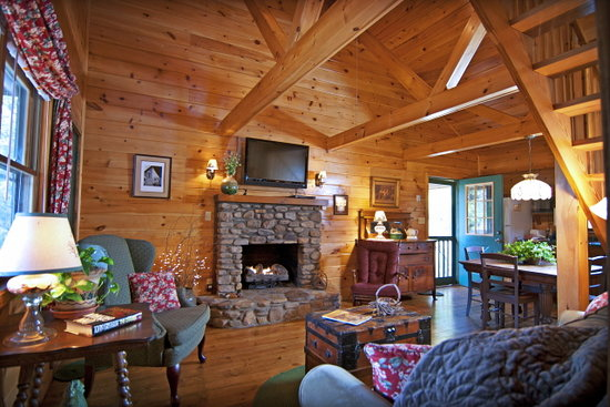 Mountain Springs Cabins 사진