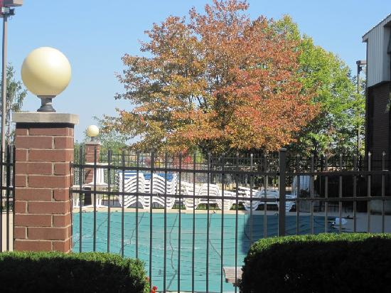 Quality Inn & Suites Dayton South / Miamisburg: Even in the fall, the pool is nice to look at.