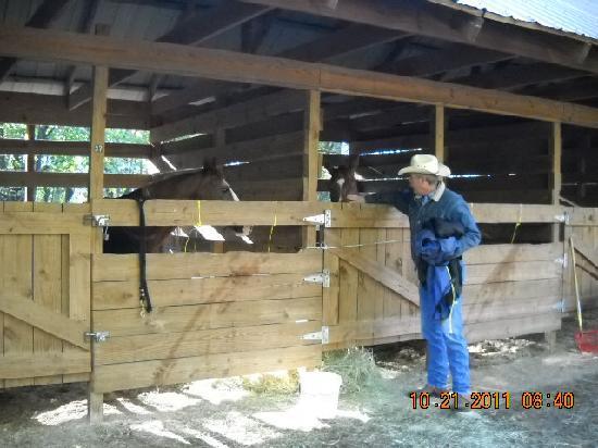 Watson Mill Bridge State Park: Stals