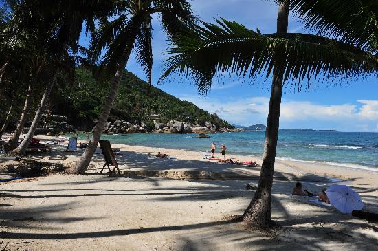 หาดละไม: Cristal Bay Lamai Beach