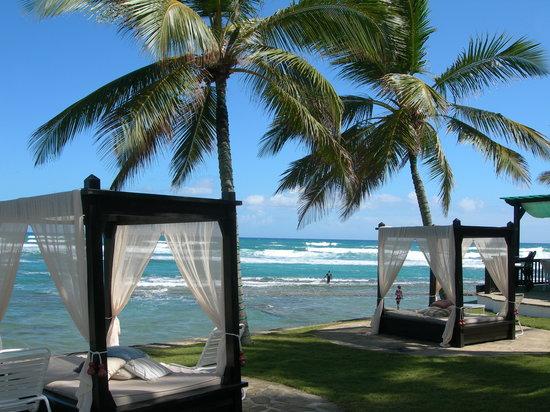 منتجع فيليرو الشاطئي: ocean view