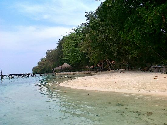 Alam Kotok Island Resort: the beach