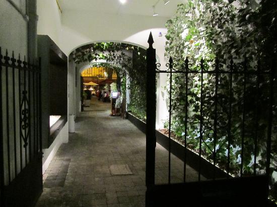 Lampuga Polanco: en camino al la terraza jardin