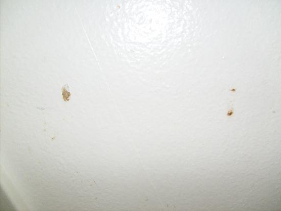 Americas Best Value Inn-Thousand Oaks: Feces on bathroom walls