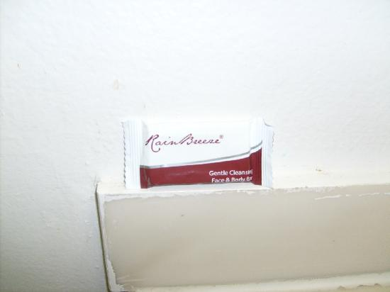 Americas Best Value Inn-Thousand Oaks: The ONLY item provided for consumers to use