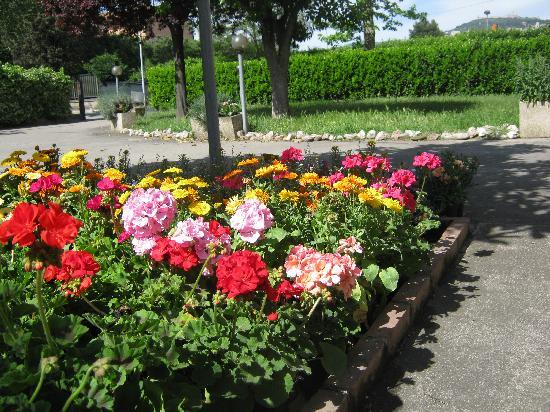 B&B Raffiori: giardino e parcheggio