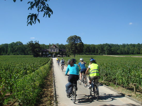 Burgundy Bike Tour