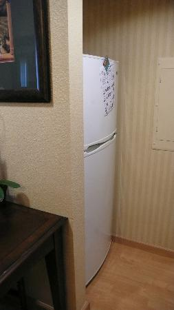 Homewood Suites by Hilton San Diego-Del Mar: Fridge!
