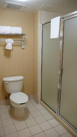 Homewood Suites by Hilton San Diego-Del Mar: toilet/shower