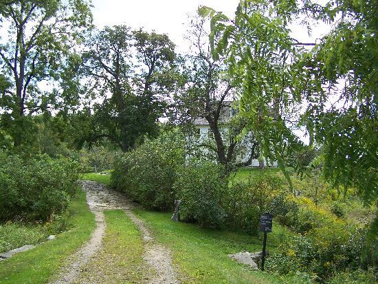 Hamilton House: Jardins